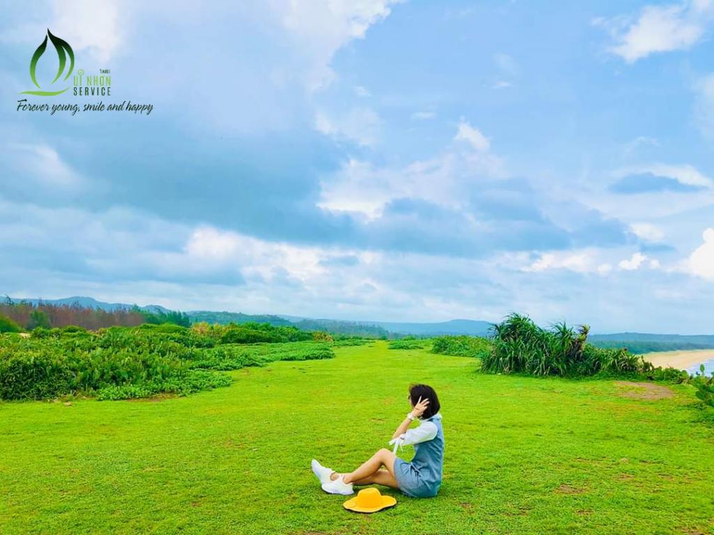 Hoa Vàng Trên Cỏ Xanh - Tour Phú Yên Ghềnh Đá Đĩa