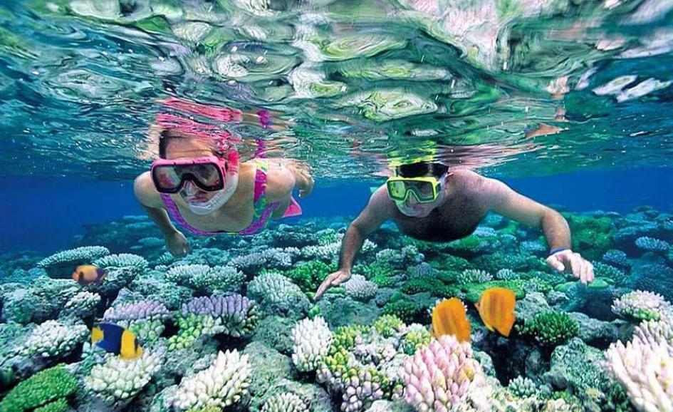 Lặn biển ngắm san hô