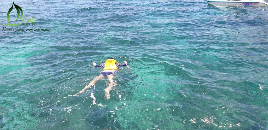 Lặn ngắm san hô Hòn Khô