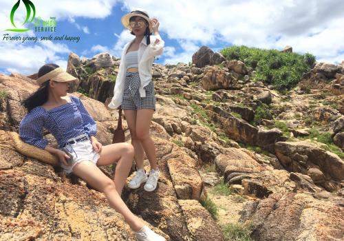 Đánh giá chi tiết tour du lịch trong ngày giá rẻ tại Quy Nhơn